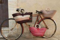 bike and bicycle1